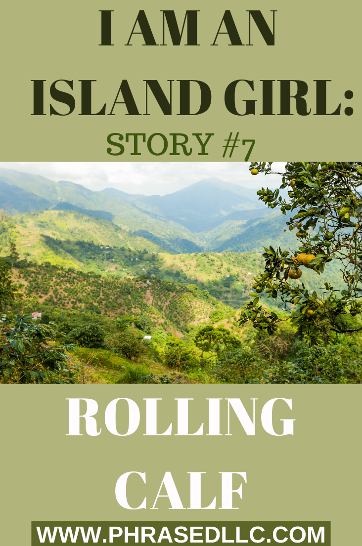 Story #7 in the I am an Island Girl series takes us to St. Ann, where Kim gets introduced to a rolling calf. What do rolling calves look like and what do they do? Read to find out more.
