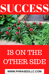 Success is on the Other Side  best, short inspirational quote on a red background with white writing and green plants with red flowers.
