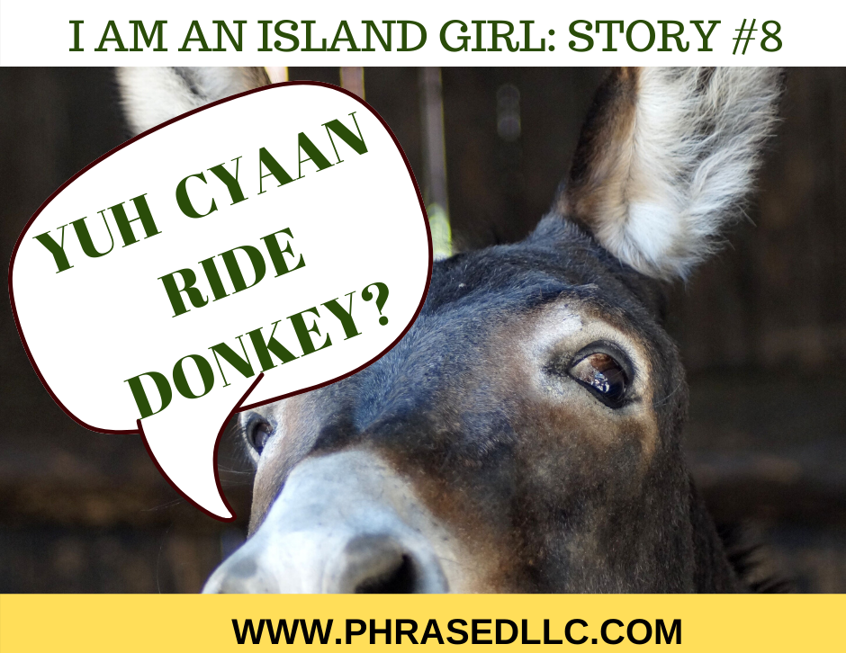 Find out what happens in the eight I am an Island Girl story in St. Ann on my first time riding a donkey.