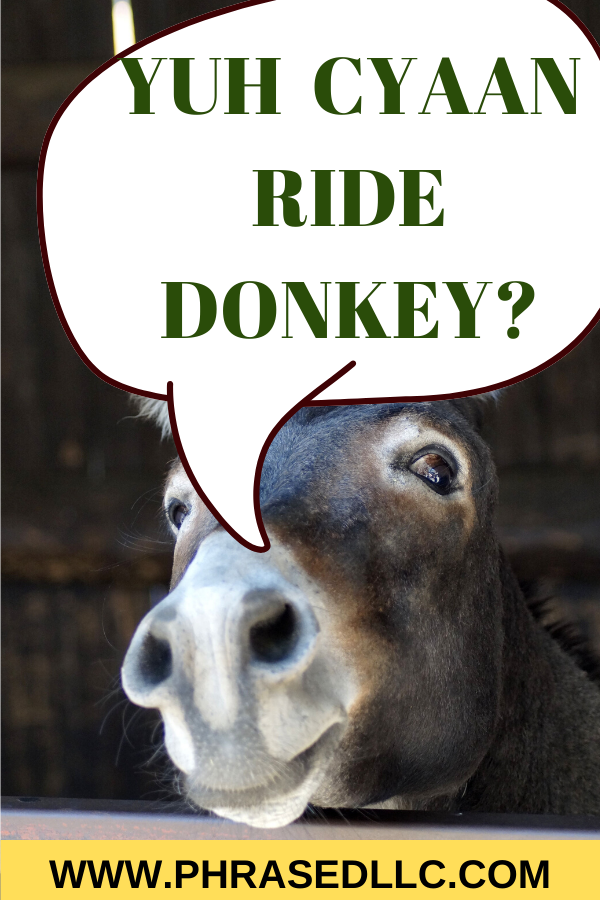 "Visit the beautiful parish of St. Ann in story 8 of the I am an island Girl series, ""Yuh Cyaan Ride Donkey"" and learn about my first time riding a donkey."