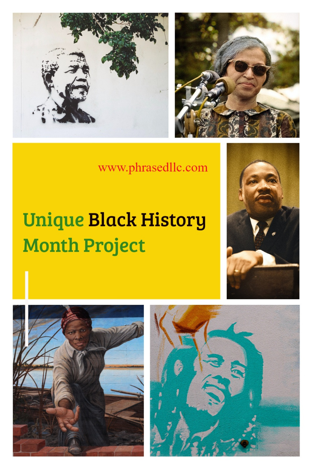 Want a unique black history lesson for kids that they will find exciting and relevant? Want to show them to relationship between Nelson Mandela and Chadwick Boseman? Well, the New Stars of Black History project is what you need.