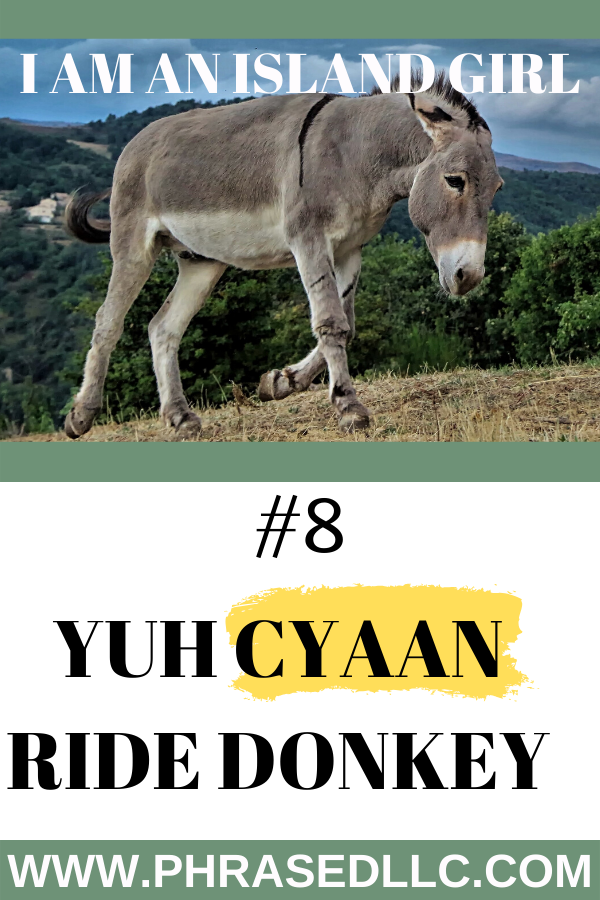 "Ever ridden on a donkey? See what happened on my first time riding a donkey, growing up in Jamaica in ""Yuh Cyaan Ride Donkey."""