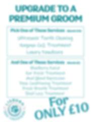 Premium Groom Poster 2019.jpg