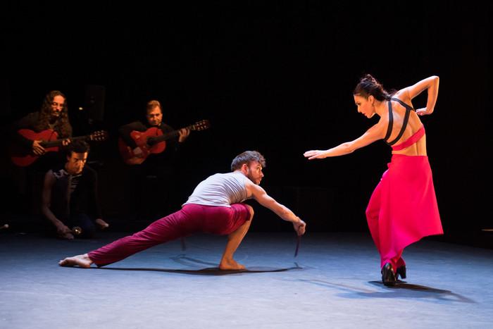 El cautivador Mosaico de Flamencos en Route