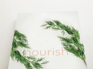 Nourish%20cover%20mock_edited.jpg