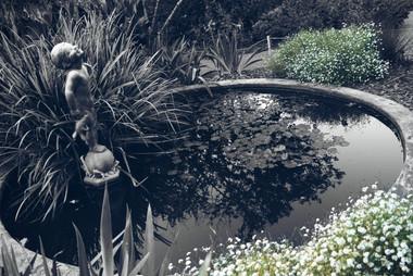PicsArt_10-11-06.58.18.jpg
