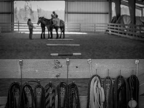 reins on arena wall and rider on horse in background
