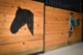 Horse-Clint Eastwood stall