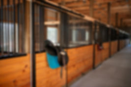 English saddle on barn doors