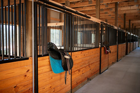 English saddle on barn doors