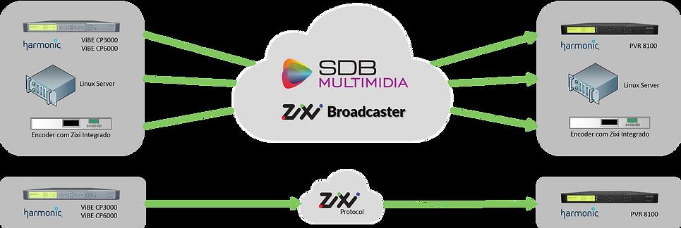 SDB Zixi b.png