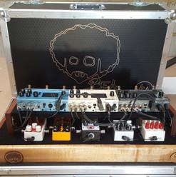 Custom Earl with Flightcase & Tier