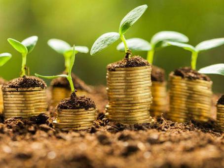 Resiliencia financiera.
