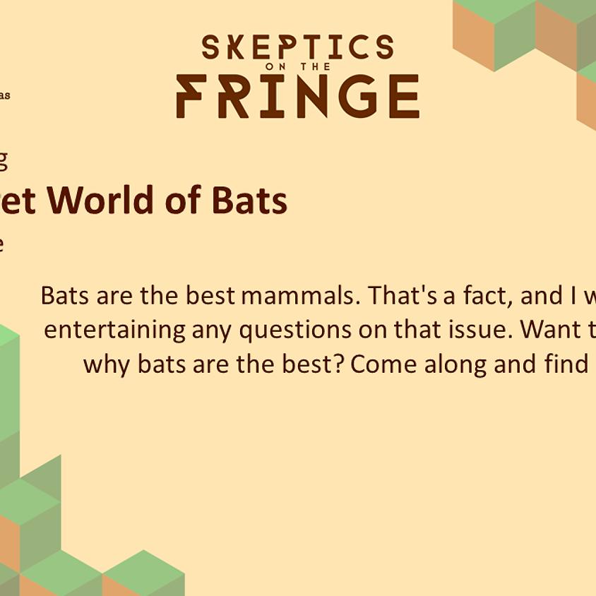Tracey Jolliffe - The Secret World of Bats