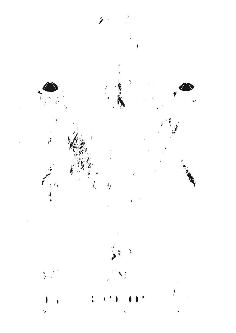 19.04.03.EYES(2).jpg