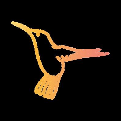 New MFT HummingBird-01.png
