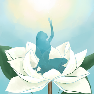 Growing Magnolias