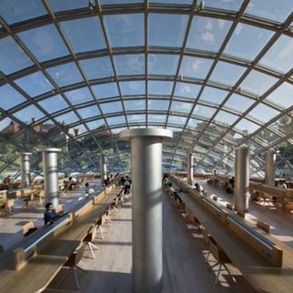 UChicago Library Series: Key Takeaways