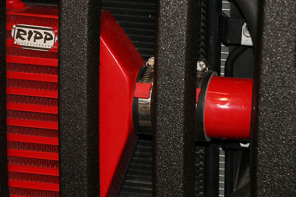 Worm gear performance hose clamps with red covers on ripp supercharger intercooler