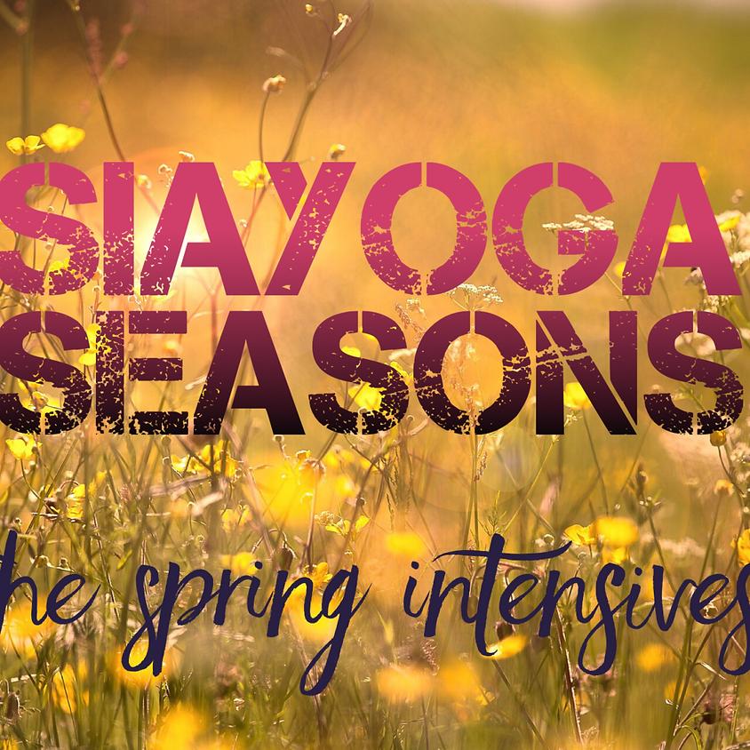 SIAYOGA SEASONS | The Mandala Principle
