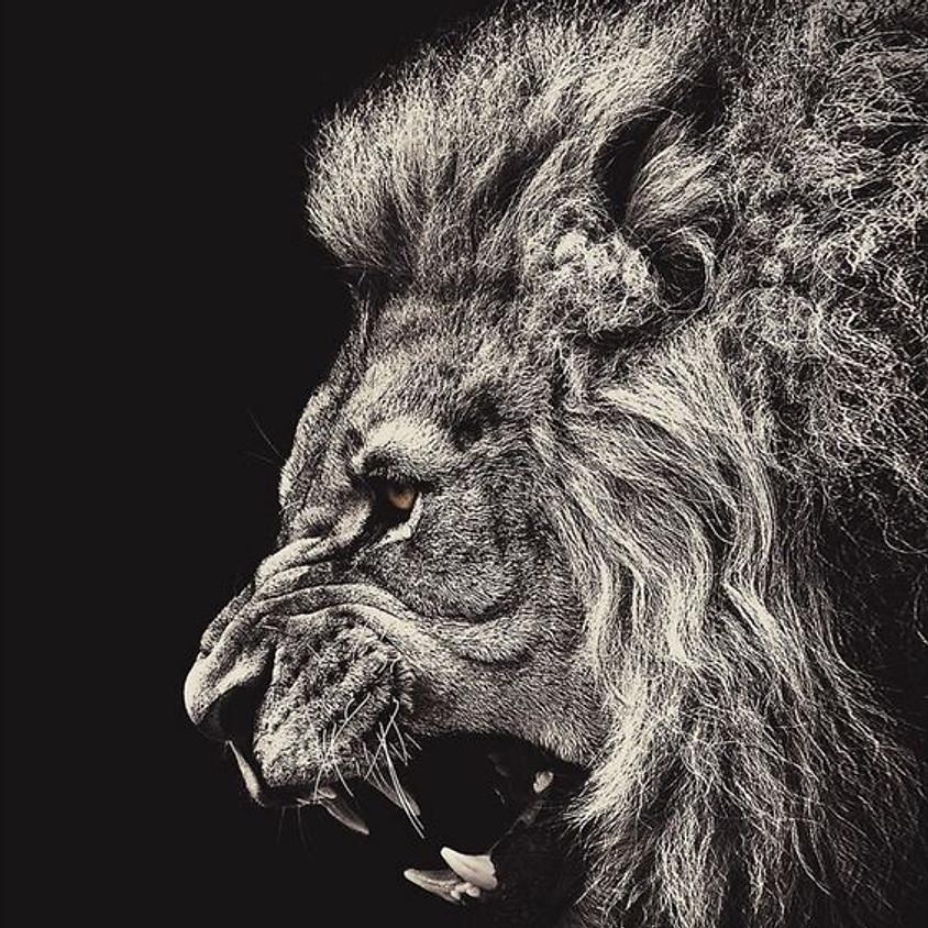 The Lions Roar - Teacher Student relationship in Vajrayana Buddhism