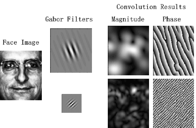 Convolution results of a face image with two Gabor filters Face recognition