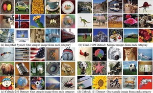 Example of images in ImageNet dataset (Source)
