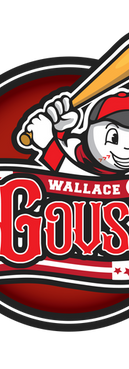 Wallace logo-01.png