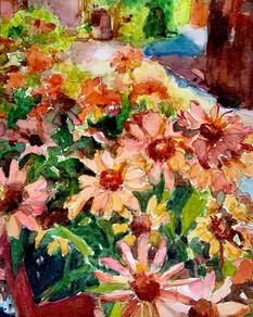 Orange Daisies Watercolor.jpg