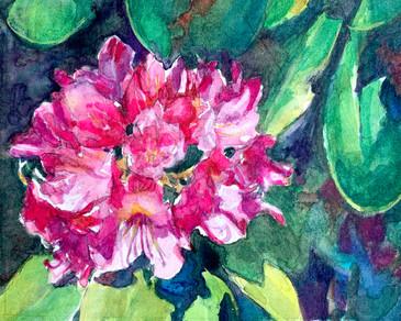 Radiant Rhododendrom Watercolor.jpg