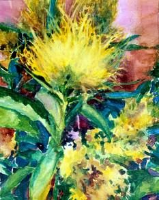 Yellow Brush Flower Watercolor.jpg
