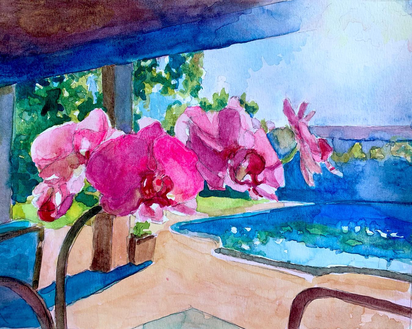 Orchid Pool Watercolor.jpg
