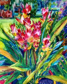 Ginger Flower Watercolor.jpg