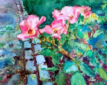 Rose Path Watercolor.jpg