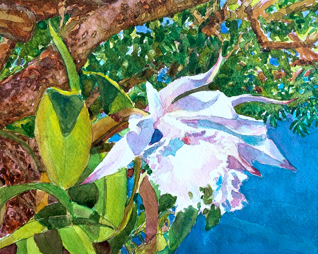 White Orchid Watercolor.jpg