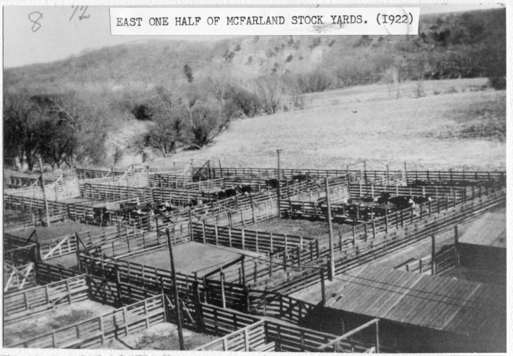 CRIP cattle pens