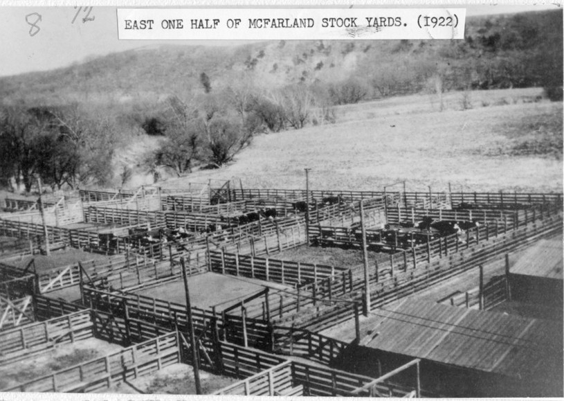 CRIP cattle pens