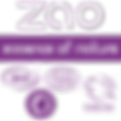 maquillage bio ecocert zao mariée soirée domicile esthétique 42 loire beauté