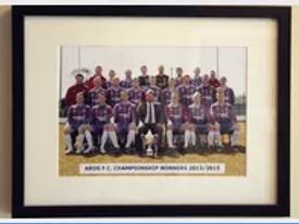 Champions 2013 Team Photo