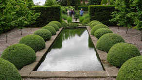 R2111 Garden Planning. What is the difference between informal and formal garden design styles?