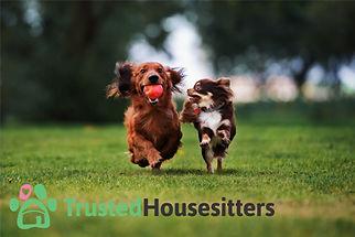 TrustedHousesitters.jpg