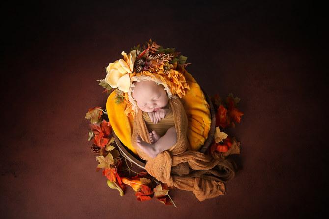 SLT PHotographie photographe professionnel nouveau-né morbihan 56 vannes lorient bretagne
