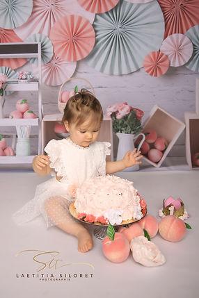 SLT photographie photographe professionnelle enfant smash the cake morbihan 56 lorient van