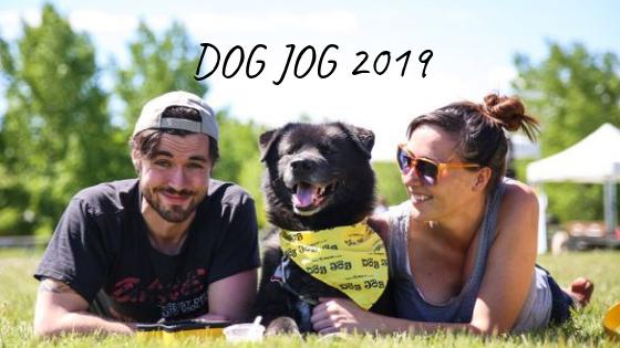 Calgary Humane Society DOG JOG