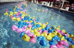 CHOM 9th Annual Duck Derby707.JPG