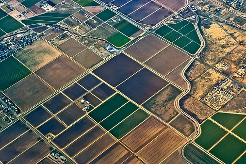 Agricultural Landscape.jpg