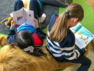 Our library in the Grove Campus has huge stuffed animals for the students to lounge on when reading.
