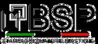 BSP1.png