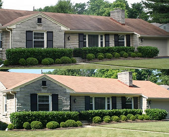 Remove black streaks from roof Maryland roof cleaning