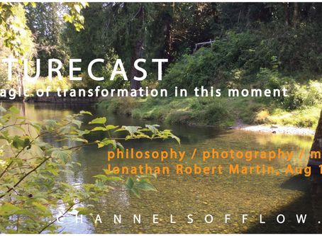 Naturecast - Audio - Magic of Transformation in this Moment - 20200815 - Jonathan Robert Martin